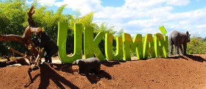 bioparque-ukumari-pereira