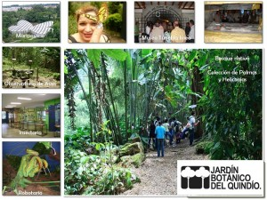 jardin-botanico-mariposario